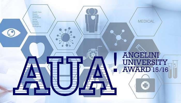 Angelini University Award