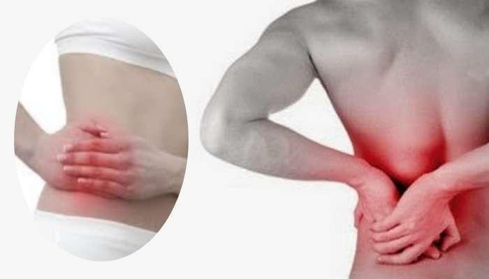 Excesso de proteína animal pode causar pedras nos rins!