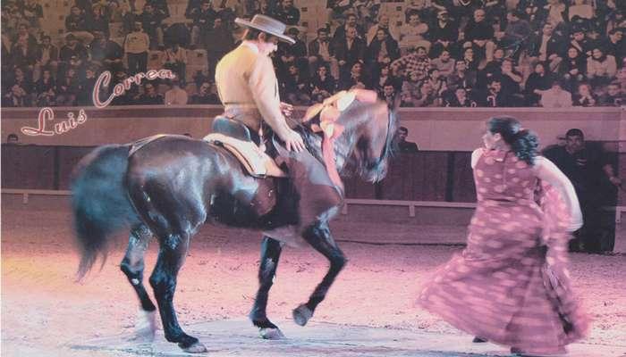 II Gala Equestre de Elvas