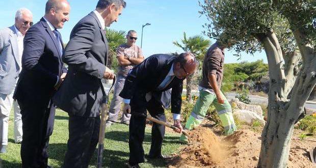 Ministro do Ambiente planta uma oliveira