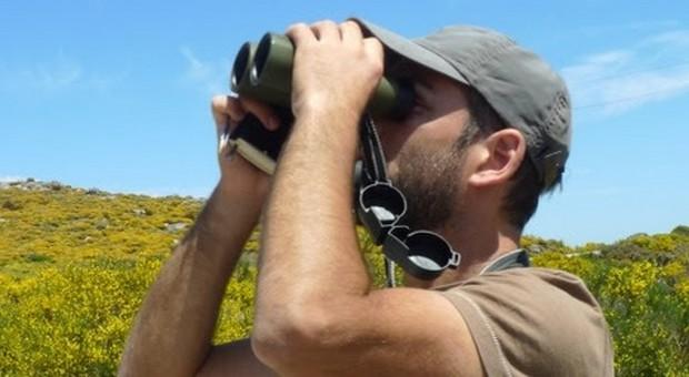 Voluntários para os Censos de Aves Selvagens