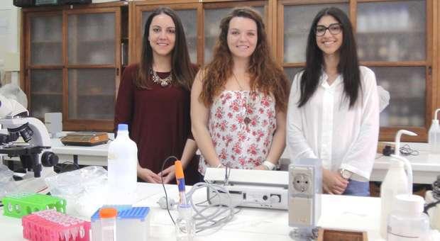 Estudantes da FCTUC criam produto alimentar 100% natural