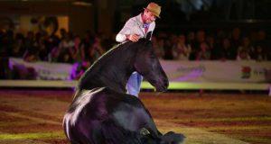 Cavalo Lusitano foi estrela na RuralBeja