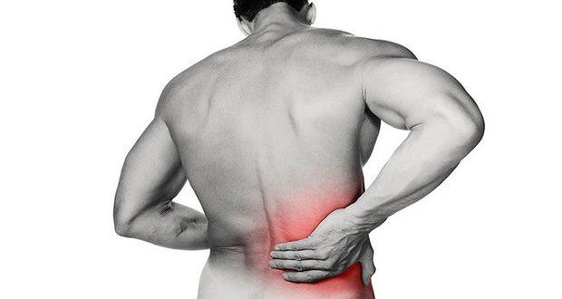 ANADIAL promove simpósio sobre doença renal