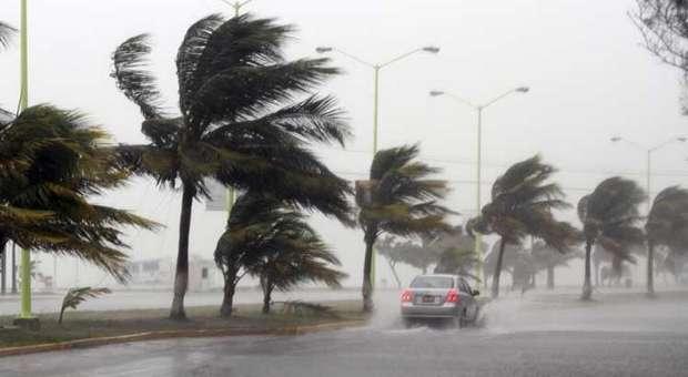 Equipa da Allianz Portugal apoia vitimas do mau tempo