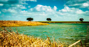 Construção do Parque Fluvial Cinco Reis em Beja