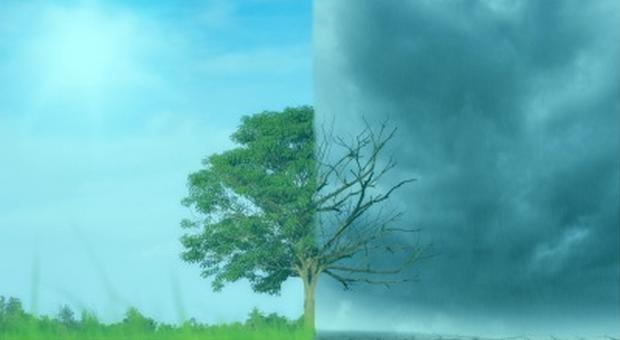 Estratégia do Municipio de Lagos para as alterações climáticas