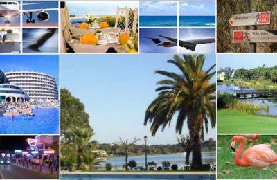 Abertas as candidaturas ao Programa CRESC ALGARVE 2020