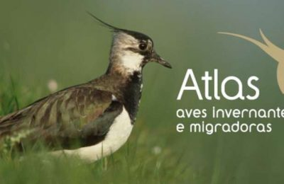 1º Atlas das Aves Invernantes e Migradoras de Portugal