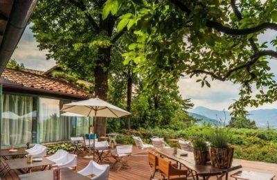 Viagens por cinco importantes regiões vitivinícolas