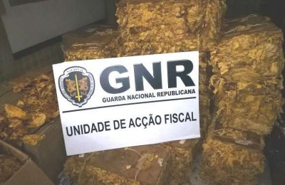 GNR apreende meia tonelada de folhas de tabaco