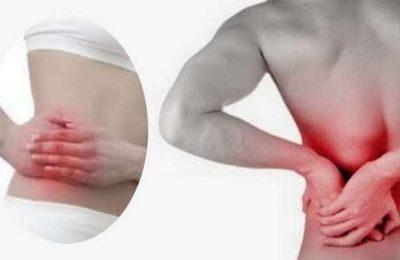 Prémio para investigação da insuficiência renal crónica