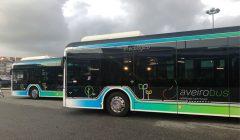 Já rodam os Autacarros elétricos Transdev da rede AbeiroBus