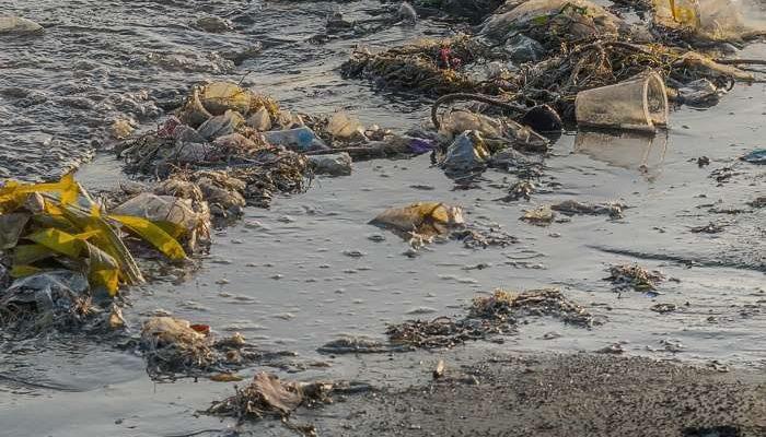 PAN defende a Prevenção da Contaminação dos Solos