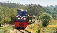 CP: Comboio Histórico do Vouga aos Sábados