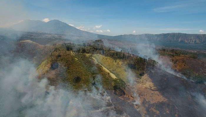 RespondDrone no controlo de desastres naturais