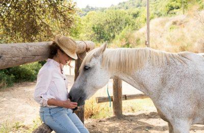 A Airbnb promove experiências turísticas com animais