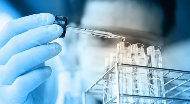 SPO atribui bolsas de investigação na área do cancro