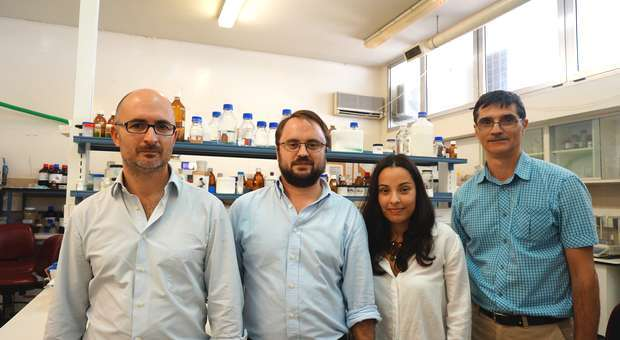 Investigadores portugueses desenvolvem poliéster insaturado