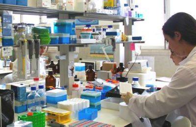 Biotecnologia da UCoimbra conquista novos projetos
