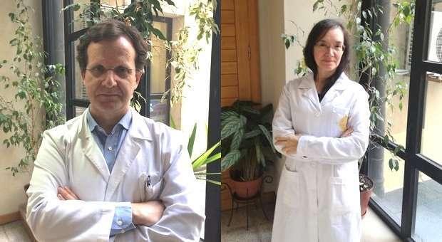Investigadores da UC integram projeto Brasileiro