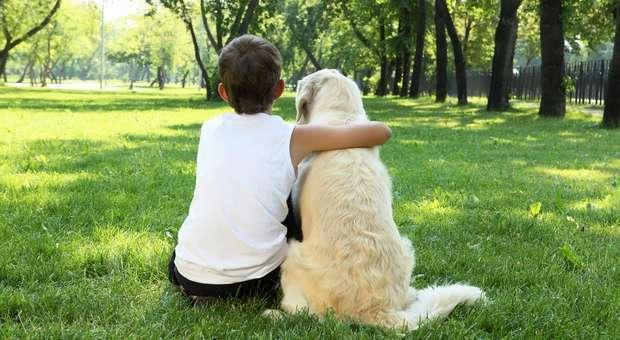 Animais de Estimação potenciam o desenvolvimento das crianças