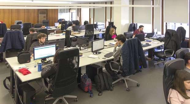 A IT Sector vai admitir 40 colaboradores até final de Maio