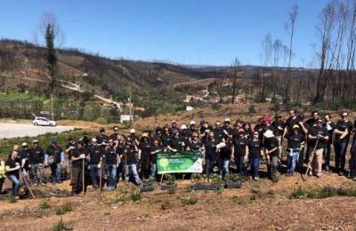 Voluntários da Altice Portugal plantam 1000 medronheiros