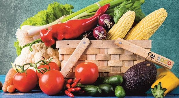 Sessão de Alimentação Saudável e Acessível em Castro Marim