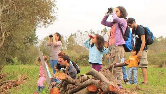EuroBirdwatch - fim de semana europeu de observação de aves