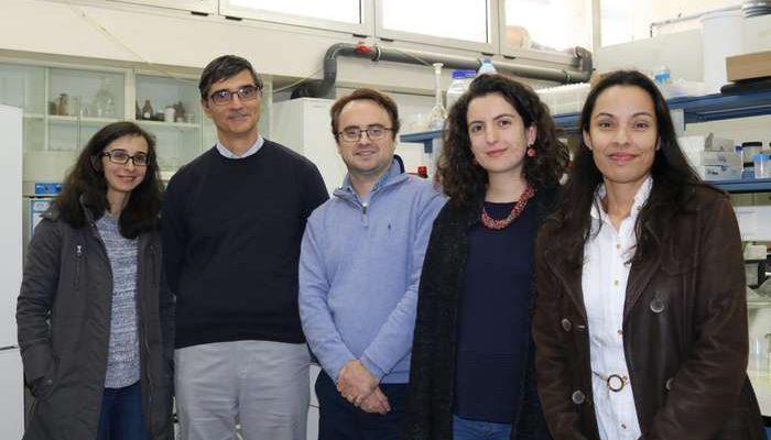 Equipa da FCTUC desenvolve substituto do tóxico estireno