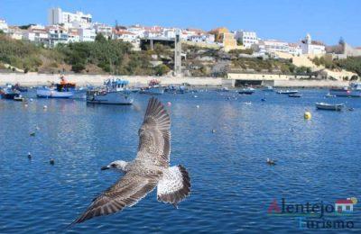 4ª edição da Feira do Mar e Tasquinhas em Sines