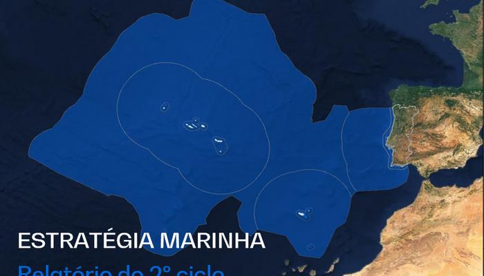 Avaliação do Estado Ambiental das águas marinhas
