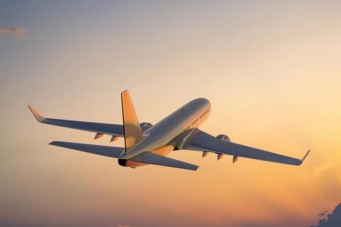 Portugueses repatriados em voo fretado pela MSC Cruises