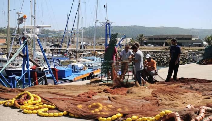 Docapesca lança campanha de promoção de peixe fresco