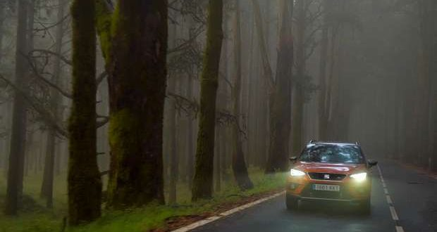 10 dicas para uma condução tranquila no Outono