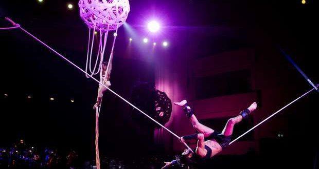 https://livestage.ticketline.pt/show/circo-de-natal-coliseu-porto-ageas.
