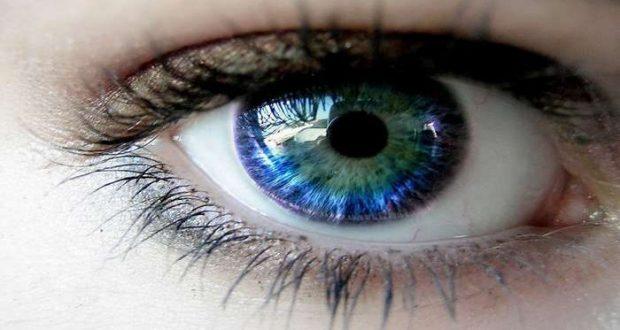 Debate: A APLO assinala o Dia Mundial da Optometria
