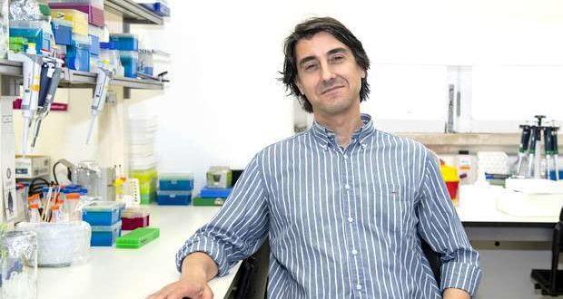 UC desenvolveu Nanopartícula de Combate ao Cancro