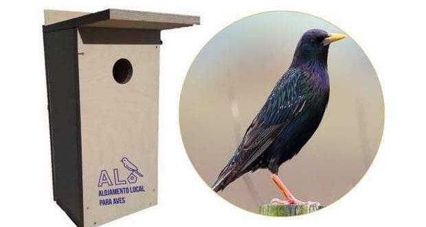 Vita Nativa instala 30 caixas ninho na cidade de Faro