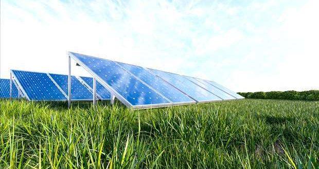 Palmela aprova Central Fotovoltaica no Poceirão