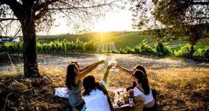 O Évora Hotel promove a Rota dos Vinhos do Alentejo