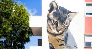 Cinco artistas dinamizam a Arte Urbana na Amadora
